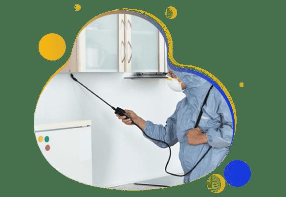 Affordable Pest Control Treatment Redfern